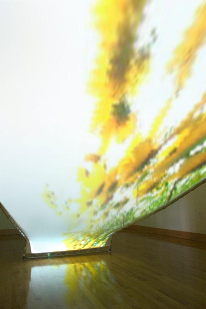 Undergrowth by David W. Halsell, installation view from underneath.